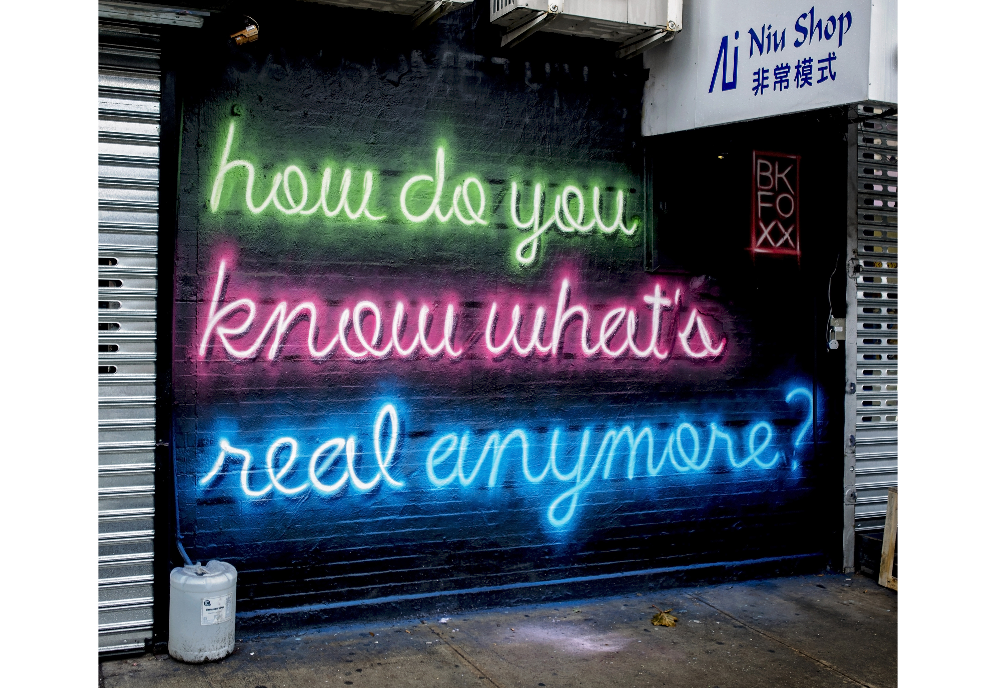 <b>You Know What's Real</b><br>Lower East Side, NYC<br>with @eastvillagewalls<br>Dec 2018<br>photo by @johndomine1